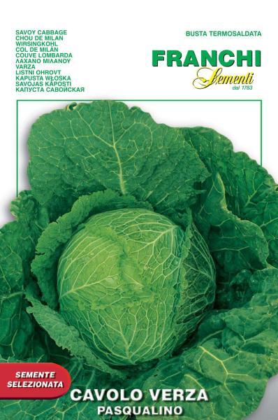 Savoy Cabbage Pasqualino