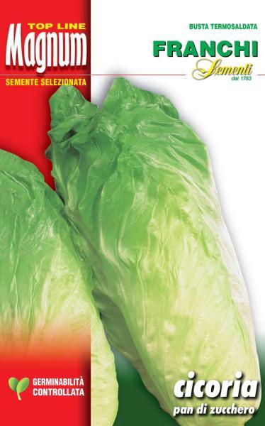 Chicory Pan Di Zucchero Restaurateurs Pack 50g