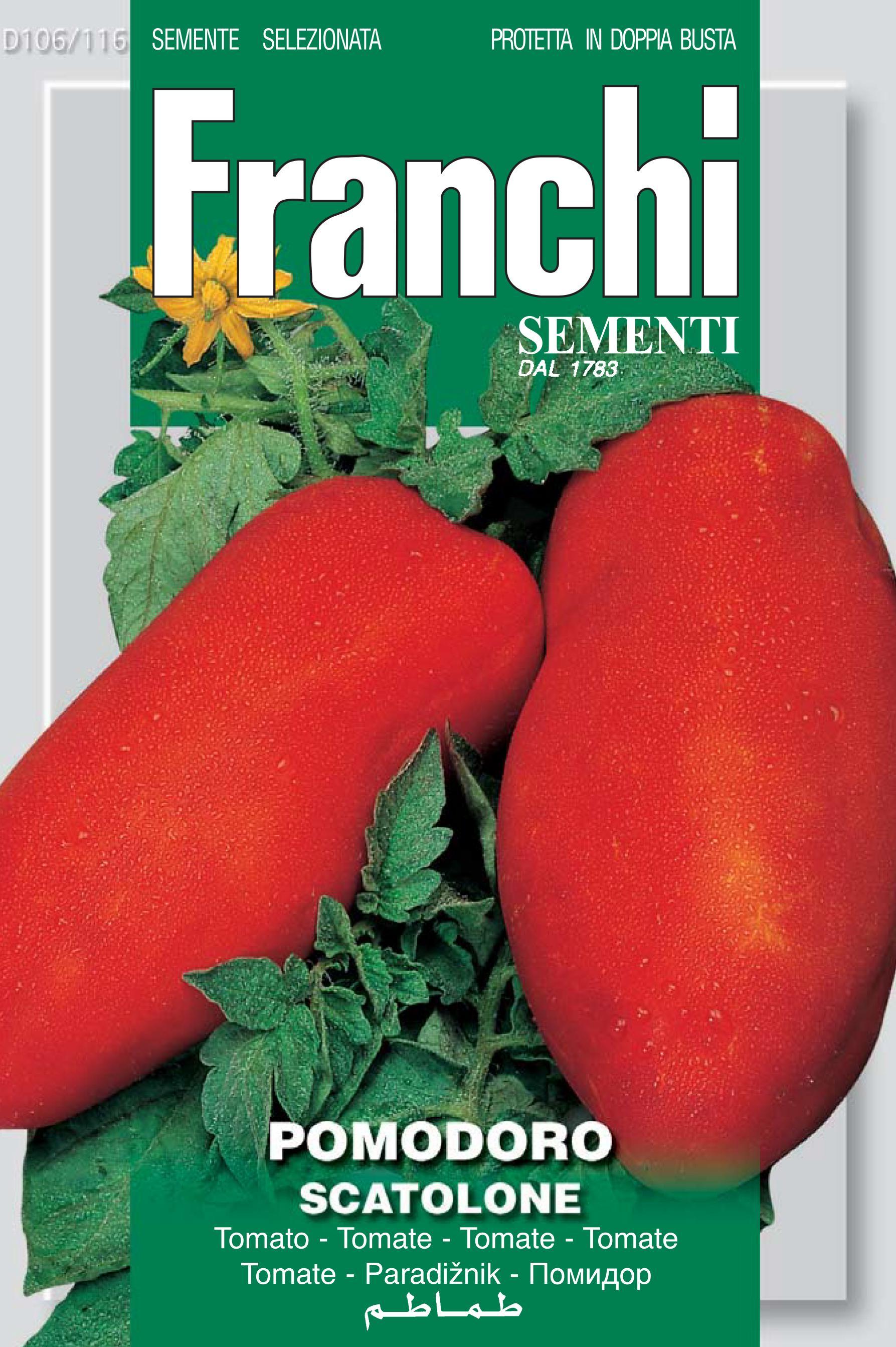 Tomato Scatolone Of Bolsena (A) Solanum Lycopersicum L.