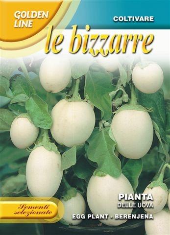 Aubergine Pianta Del Uovo