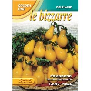 Tomato Yellow Pear Shaped (A) Solanum Lycopersicum L.