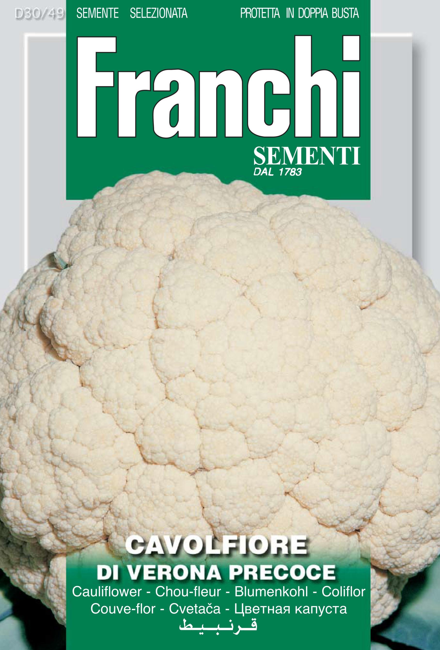 Cauliflower Of Verona Precoce