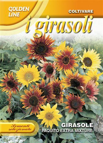 Sunflower paquito extra mix (A)Helianthus SPP