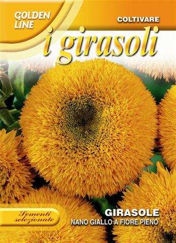 Sunflower nano giallo a fiore pieno
