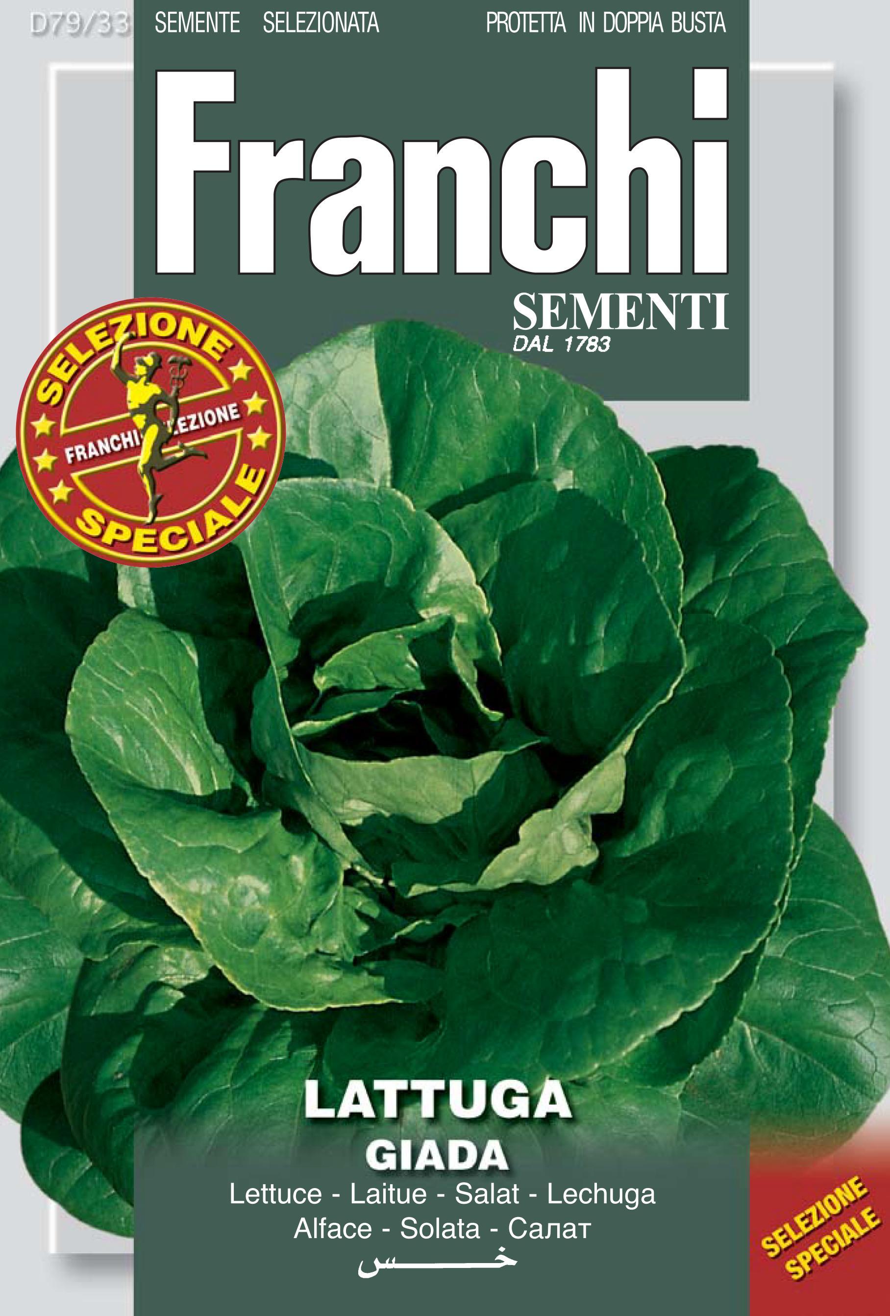 Lettuce Giada
