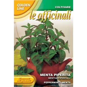 Menta Piperita - Peppermint officinalis medicinal