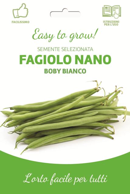 Easy Dwarf Green French Bean