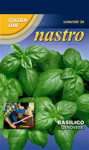 Basil Italiano Classico - *Seed Tape*