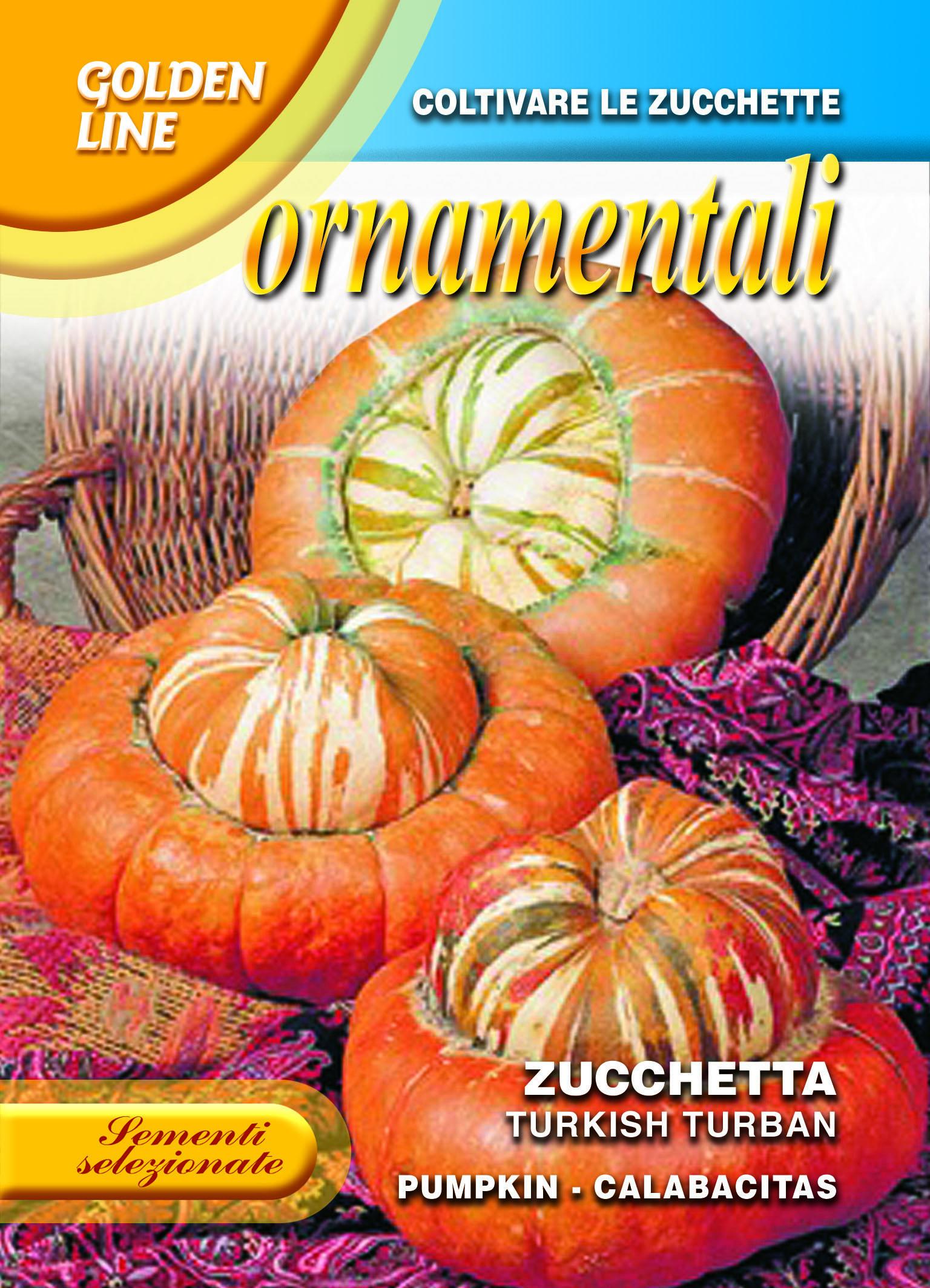 Turks turban pumpkin