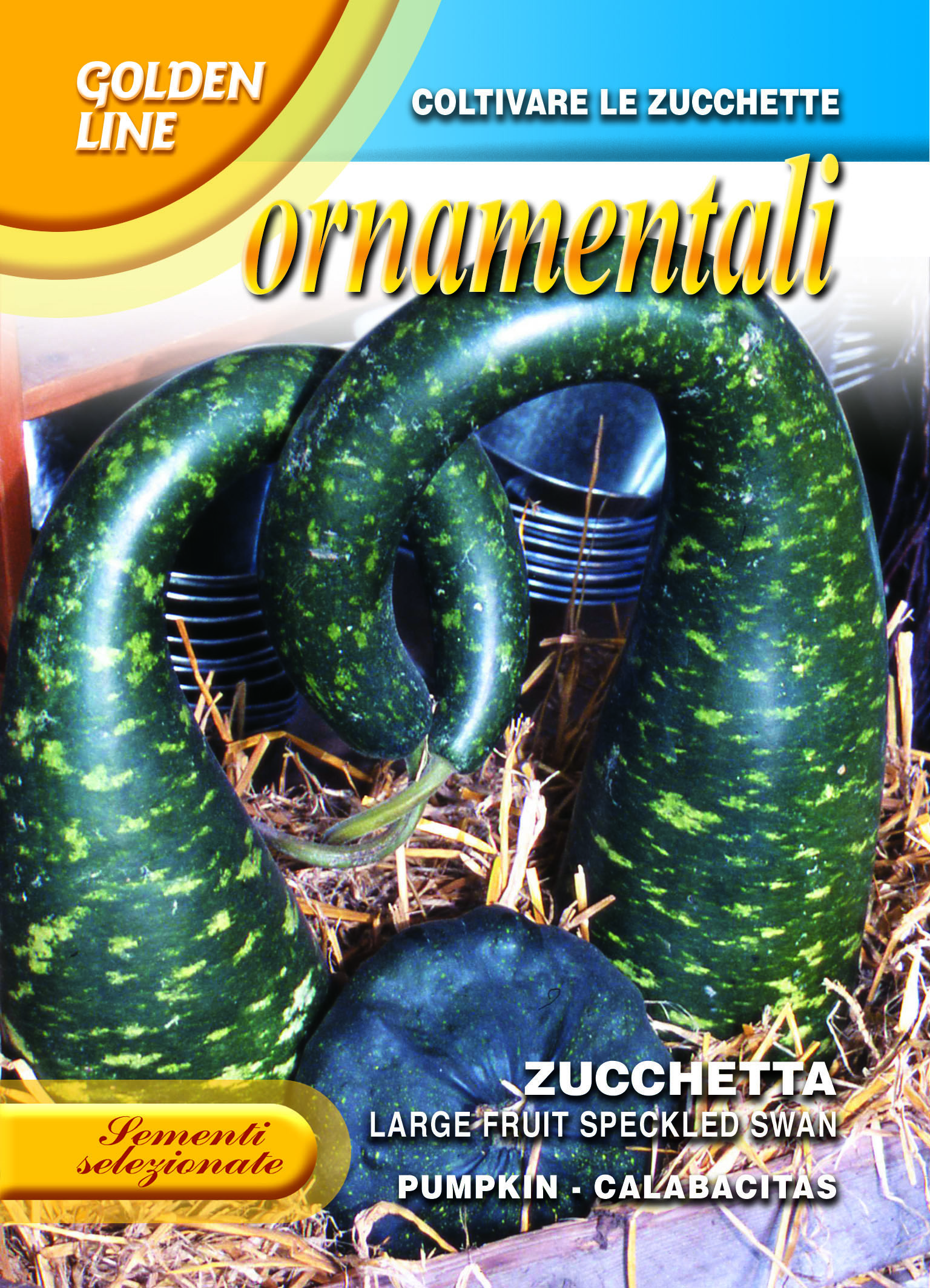 Large speckled swan ornamental squash