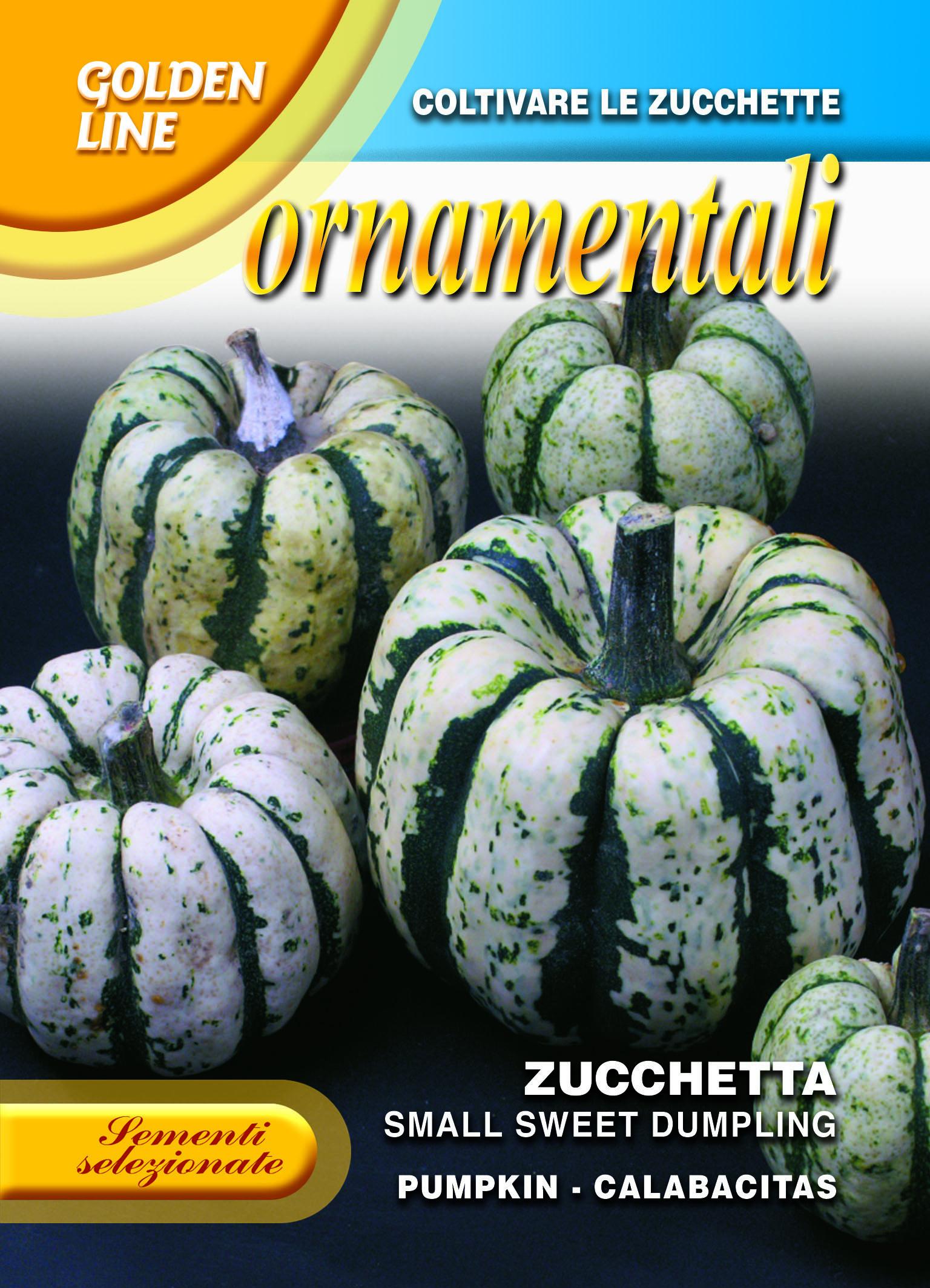 Small Sweet Dumpling Pumpkin Edible