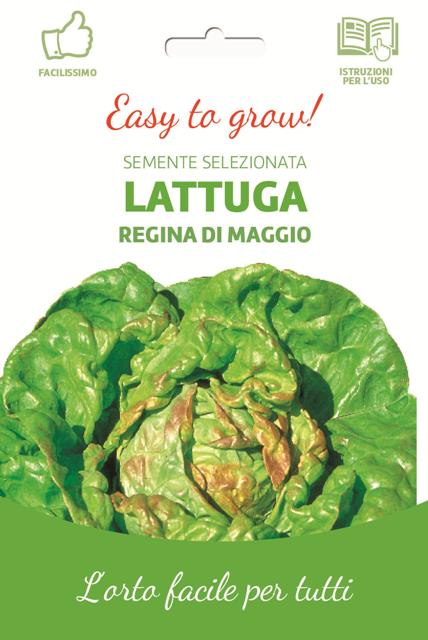 Easy Lettuce Mayqueen