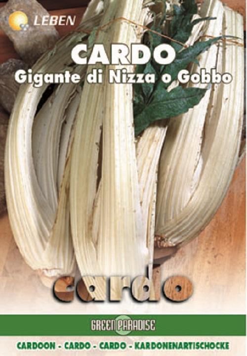 Cardoon - Distell Gobbi Di Nizza Leben