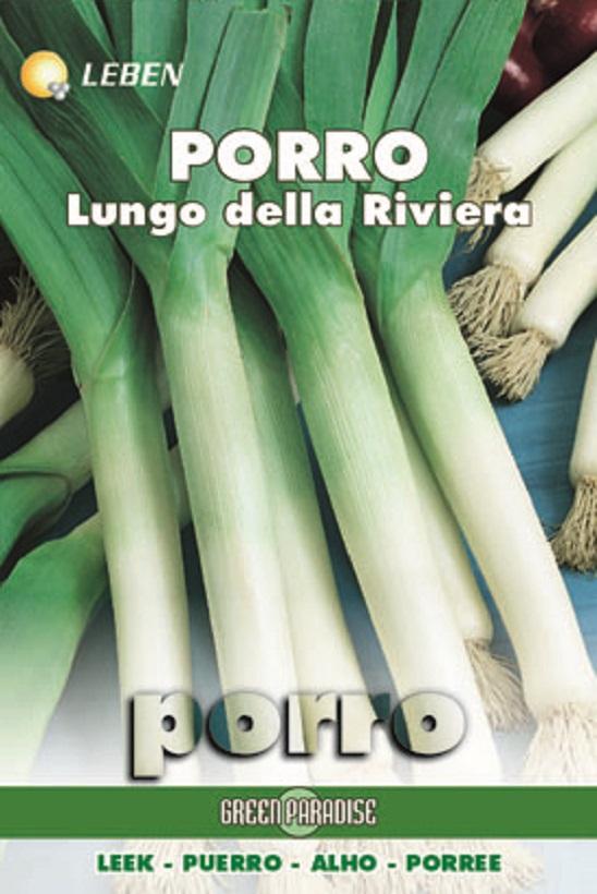 Leek Porree Lungo Della Riviera Leben (A) Allium porrum