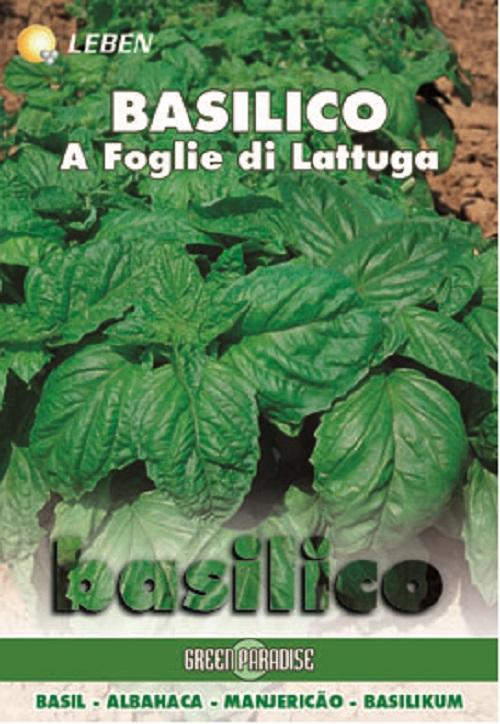 Basil - Basilicum Foglia Lattuga Leben