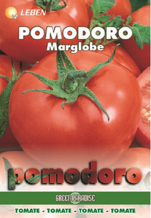 Tomato - Tomaten Marglobe Leben
