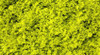 Scenic Express EX802C Flock and Turf Ground Cover, Light Green Coarse 64 oz.