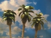 "Grand Central Gems T26 Small Palm Trees, 3-4"" (3)"