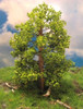 """Grand Central Gems T47 Small Maple Trees, 3-4"""" (3)"""