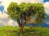 "Grand Central Gems T29 Medium Hardwood Trees, 4-5"" (2)"