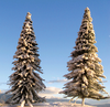 "Grand Central Gems T13 Snow Pine/Spruce Trees, 3-9"" (16)"