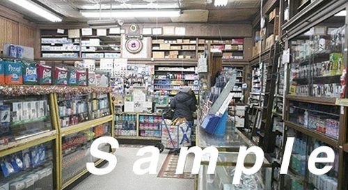 Small Store #1 Picture Window 4 HO Scale City Classics 1409