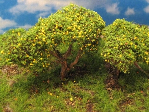 "Grand Central Gems T24 Grapefruit Trees, 3-4"" (3) (d)"