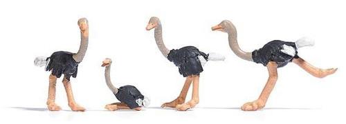Busch HO 1194 Ostriches (4)