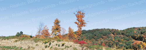"Realistic Backgrounds 704-16 Mountains Fall Foliage Scene A 13"" x 38"""