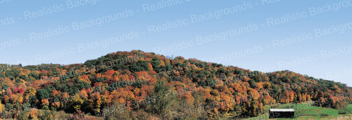 "Realistic Backgrounds 704-17 Mountains Fall Foliage Scene B 13"" x 38"""