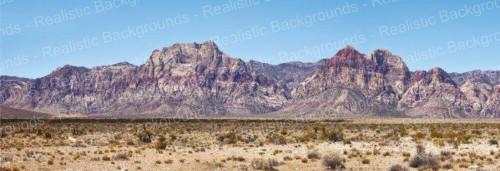 "Realistic Backgrounds 704-20 Desert Scene B 13"" x 38"""