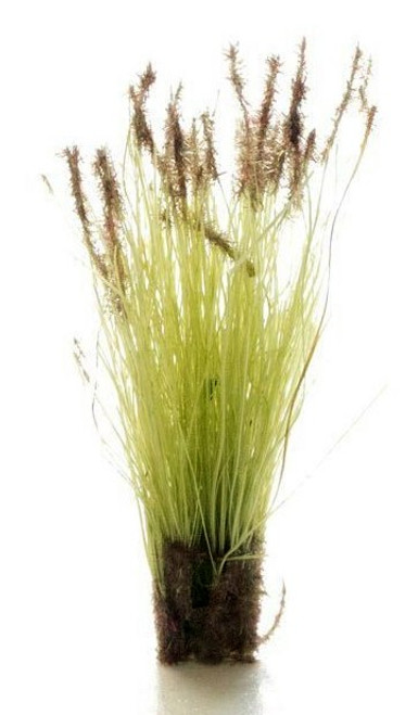 Woodland Scenics FS779 Peel 'n' Place Tufts, Brown Tipped Prairie Grass (20)