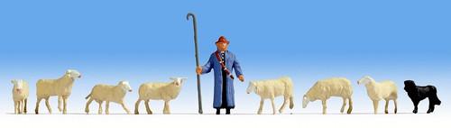 Noch N 36748 Sheep and Shepherd