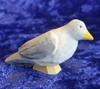 Huggler wood dove