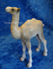 Norway nativity camel