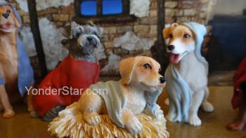 Nativity scene dogs