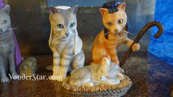 Kitten nativity scene