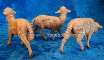 nativity scene sheep