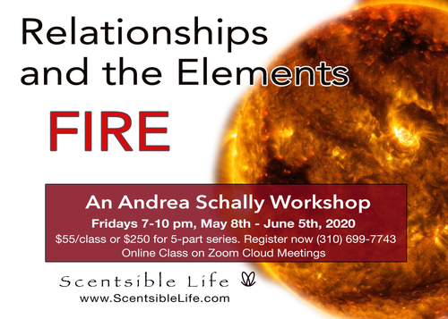 Join us for Relationships and the Elements - Fire Workshop with Andrea Schally  Fridays 7-10pm, May 8th - June 5th Where: Live online class on Zoom Cloud Meetings