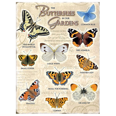 Butterfly Metal Sign