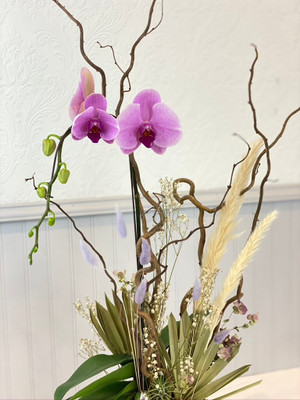 Winter orchid plant in purple beautiful with accents of grass moss dried botanicals for seattle flower delivery by juniper flowers