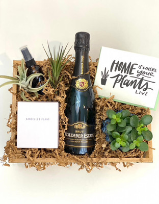 This gift crate is the perfect celebration for a new home. Desk sized planted succulent, Cancelled Plans scented candle, a few air plants and glass water mister bottle, letterpress card and a bottle of Champagne or wine of your choice. Seattle flower delivery by Juniper Flowers