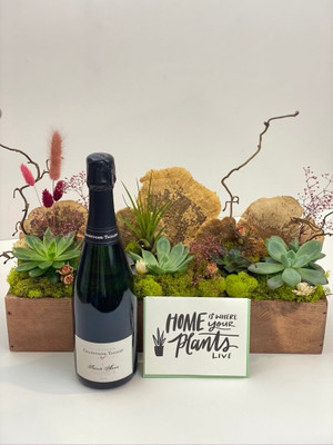 We've combined our super popular Succulent 5.0 planter with a bottle of champagne (choose from 3 options) and letterpress card from Dahlia Press. We've kept the option open if you'd like to choose a different card to suit the sentiment you are going for. Seattle flower delivery for Juniper Flowers
