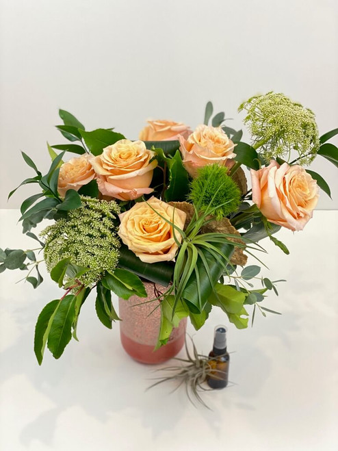 Shimmer roses wispy greens air plant water mister specialty vase