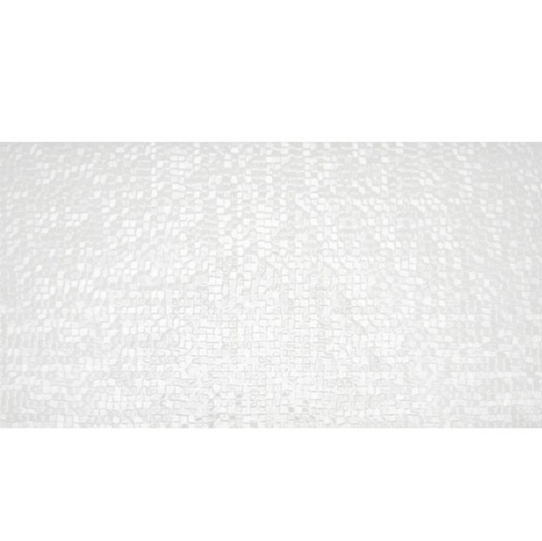 Capua Blanco Gloss 25x50