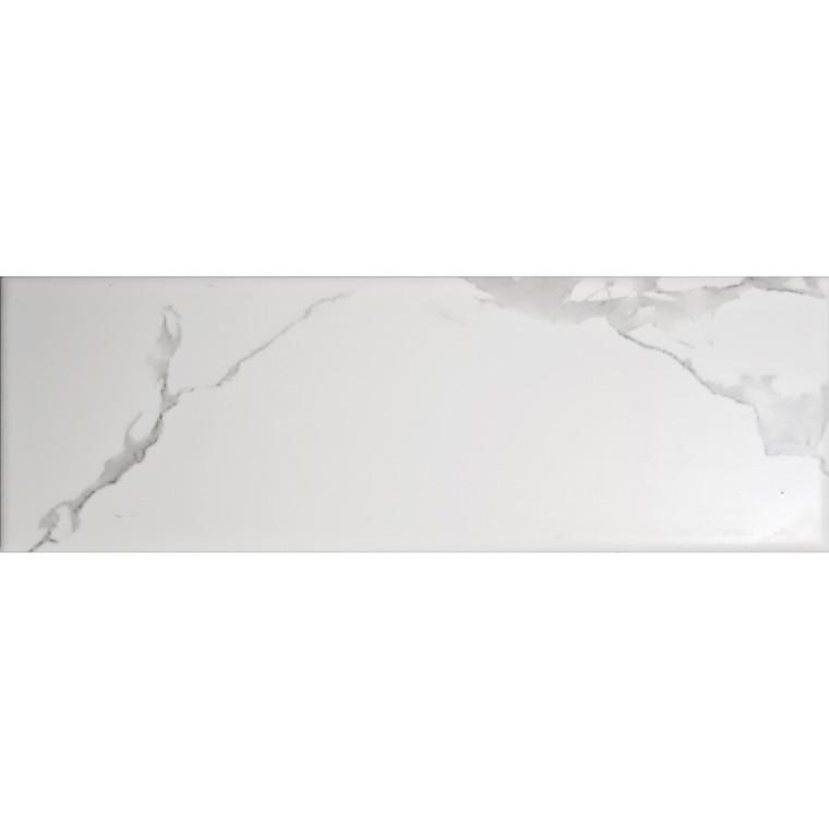 Carrara White Matt 10x30