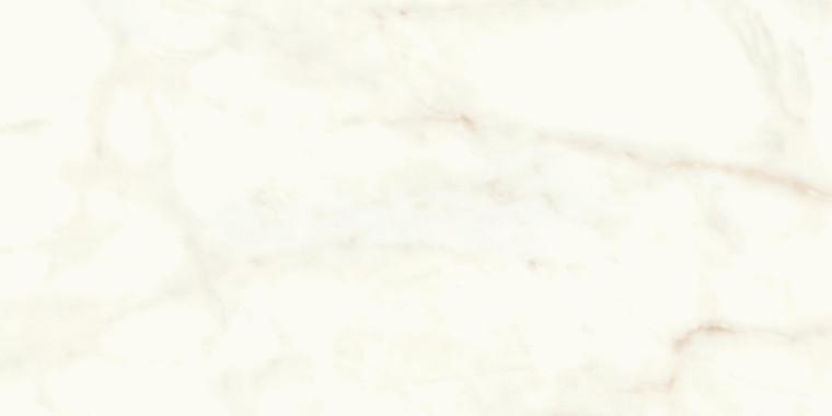 Calacatta Delicato Matt 60x120