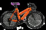 Pooch 1x8 Speed Urban Bike – Matte Orange