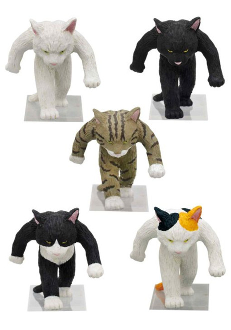 Tough Cat Blind Box