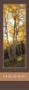 Colorado Bookmark - Mueller State Park 2513 Front